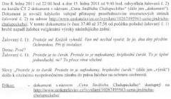 Z žaloby. Repro: facebook.com/davidcerny.cz