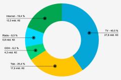 Podíl mediatypů na celkových investicích do inzerce v roce 2013. Zdroj: SPIR, Mediaresearch