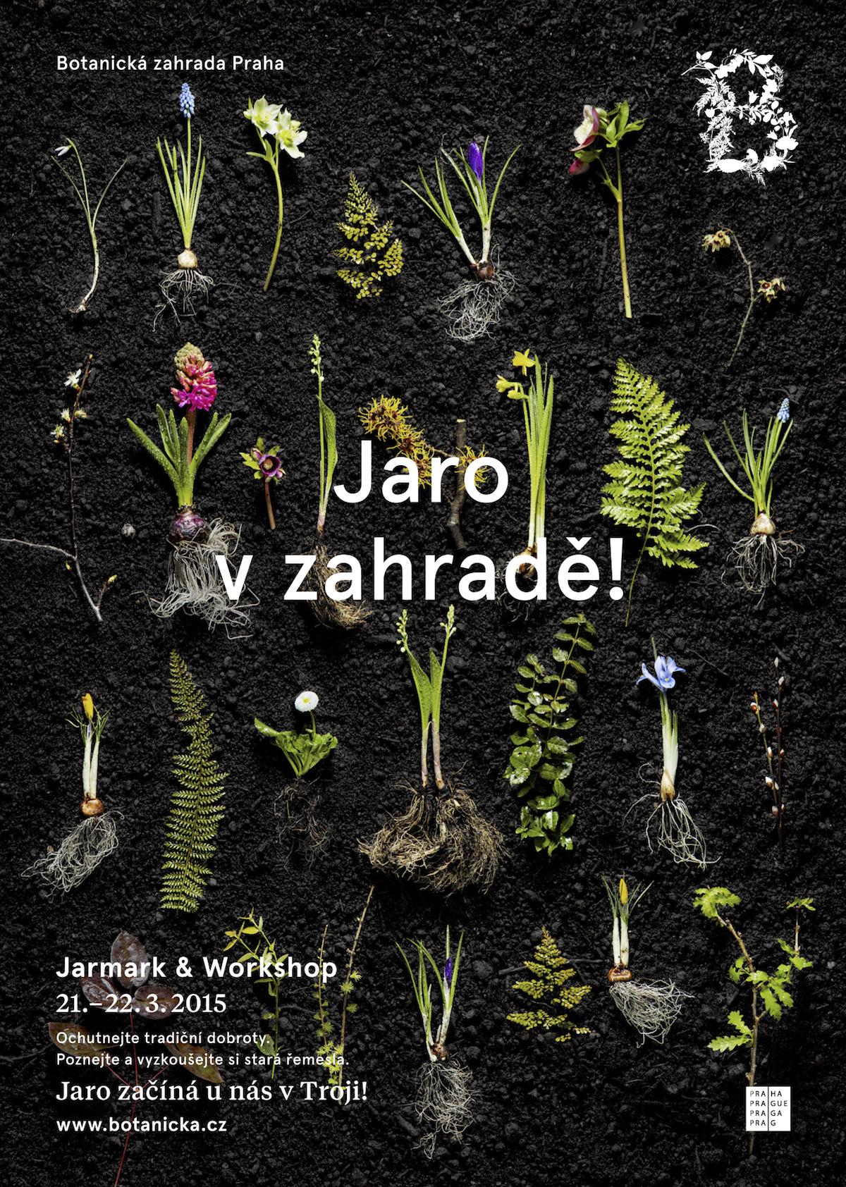 Plakáty s novou značkou Botanické zahrady Praha od Studia Najbrt