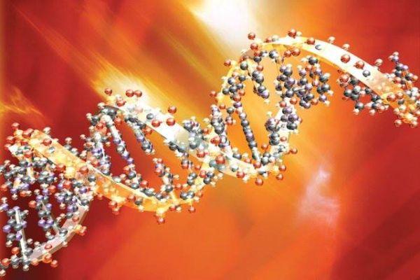 AMI pracuje pro GHC Genetics