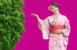 """""""Japonská půjčka"""" mění jméno i agenturu"""