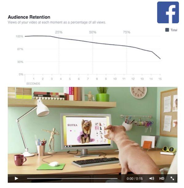 Vývoj divácké pozornosti při sledování videa na Facebooku