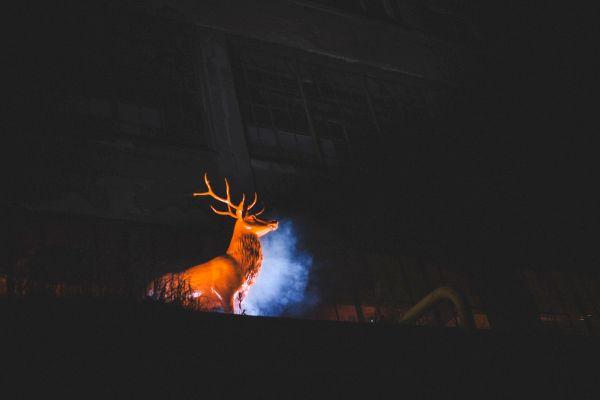 Noc Lovců v Kolbence