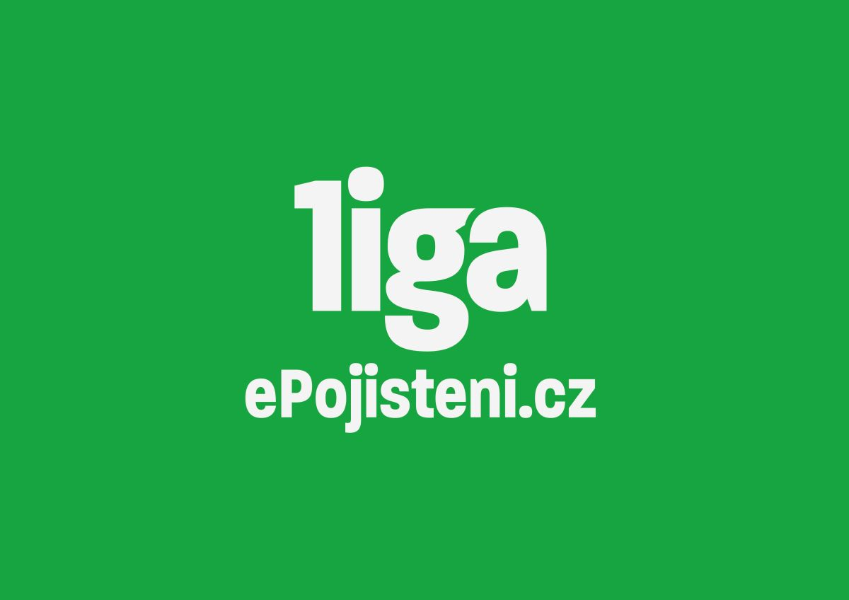 Základní manuál pro logo ePojisteni.cz ligy