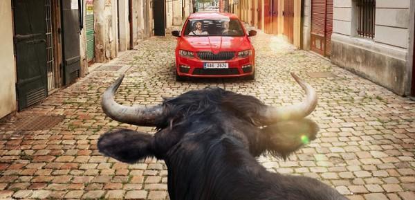 V reklamě Generali si zahrál býk ze španělské Pamplony