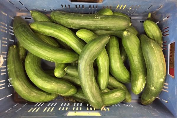 Kolonial jede módní bio, Rohlik křivou zeleninu