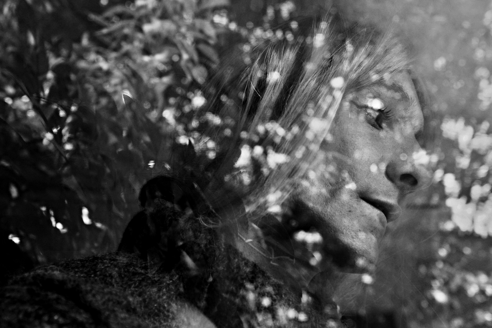 Peter Dobis (volný fotograf), Petronela