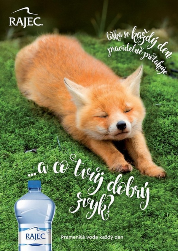 V nové kampani ukazuje Rajec dobré zvyky zvířat