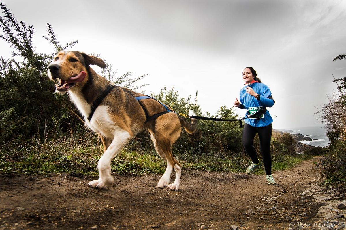 Rundogo nabízí trackování při různých sportech, jako je canicross, nebo při obyčejné procházce