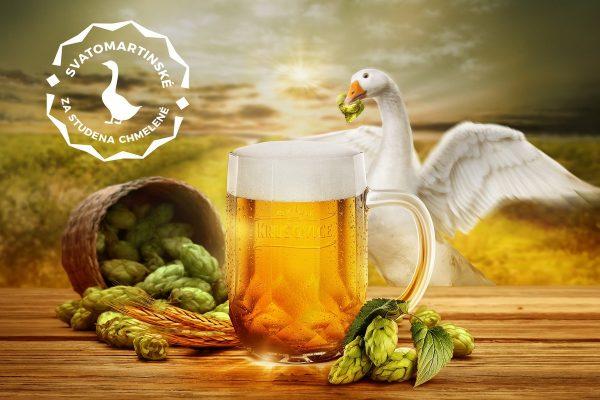 Heineken uvařil v krušovickém i brněnském pivovaru svatomartinský ležák