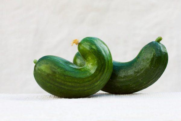Nestandardní zelenina. Foto: Profimedia.cz