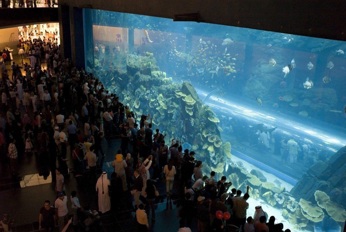 Jednou z hlavních atrakcí centra je obří akvárium. Foto: Profimedia.cz