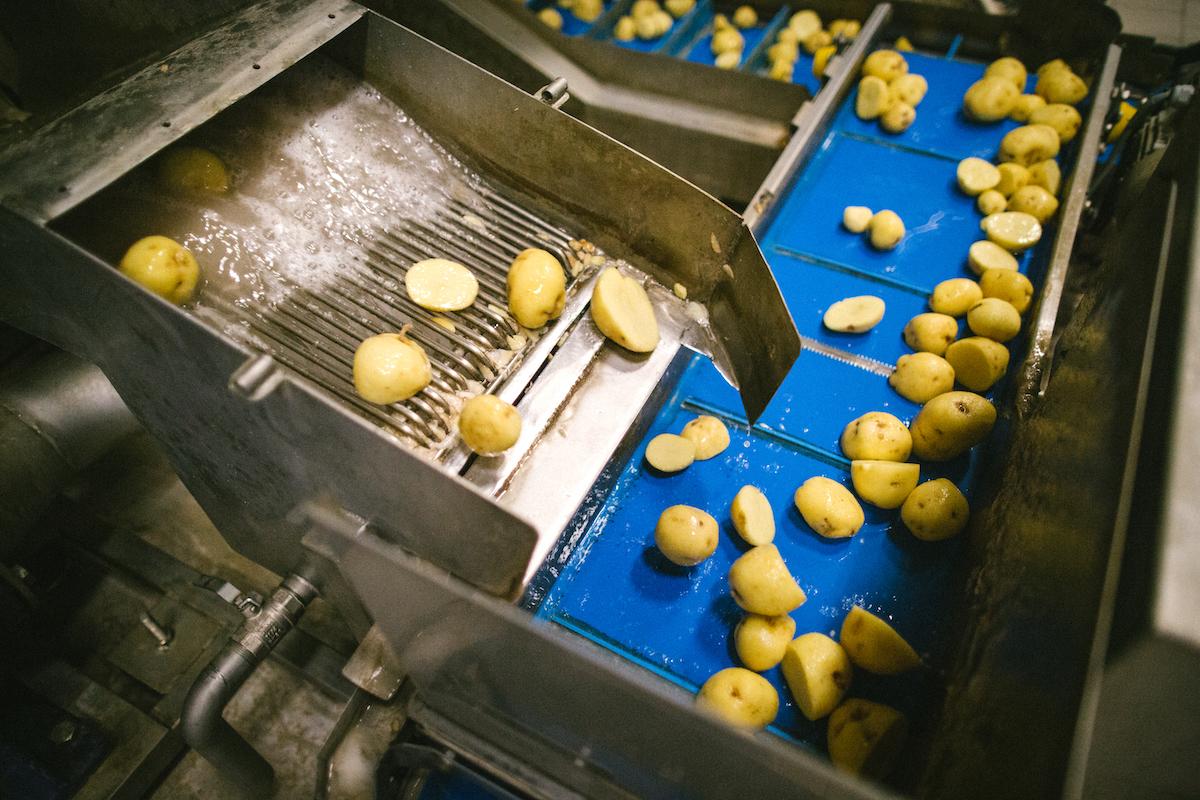 Výroba chipsů Bohemia