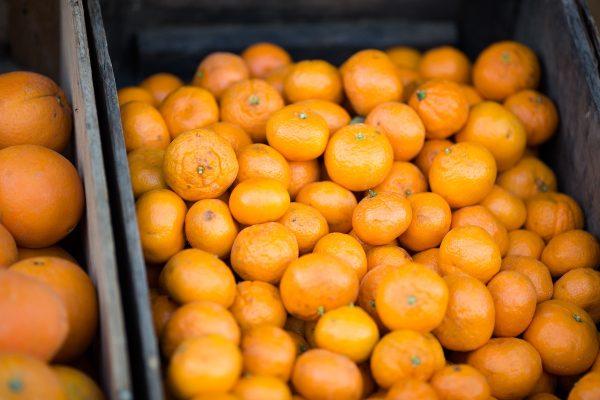 Kaufland vůbec nejvíc zlevnil krůtí řízky, Tesco mandarinky