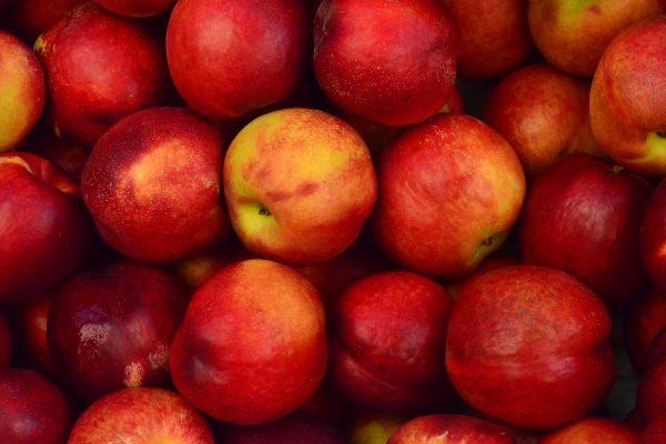 Tesco nabízí vůbec nejlevnější jablka, Billa zlevnila nejvíc za dva roky salám