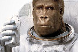 Práškovou stravu Mana ukazuje gorilí kosmonaut