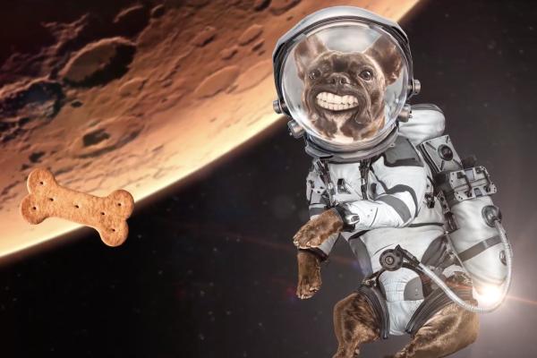 Buďte první na Marsu, láká hornicko-geologická fakulta