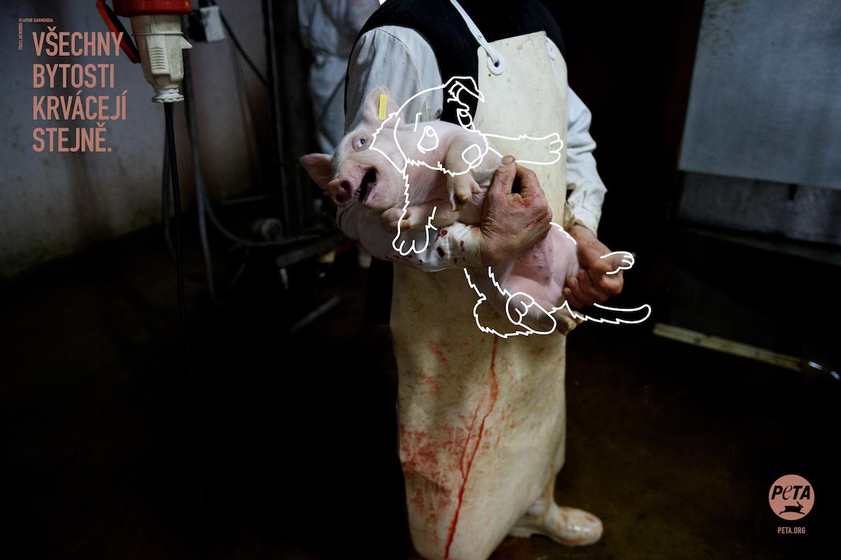 PETA Germany: Všechny bytosti krvácejí stejně (DDB Prague)