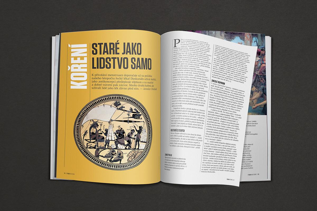 Nový layout časopisu Týden Historie