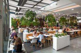 V Quadriu přibude Ovocný světozor, Vaše farma a kavárna Starbucks