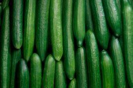 Kaufland začíná prodávat salátové okurky bez plastové fólie
