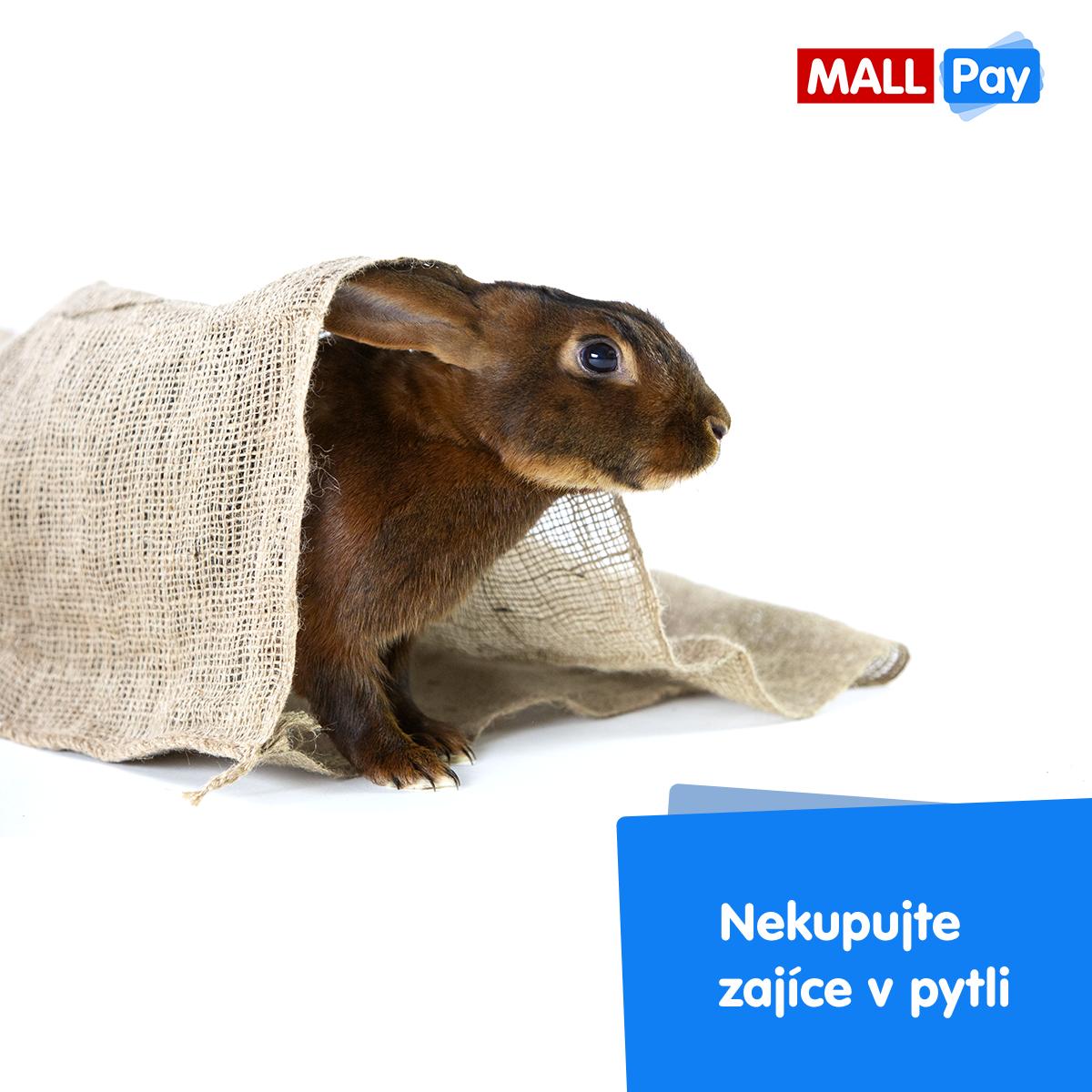 Nová komunikační linka produktu Mall Pay