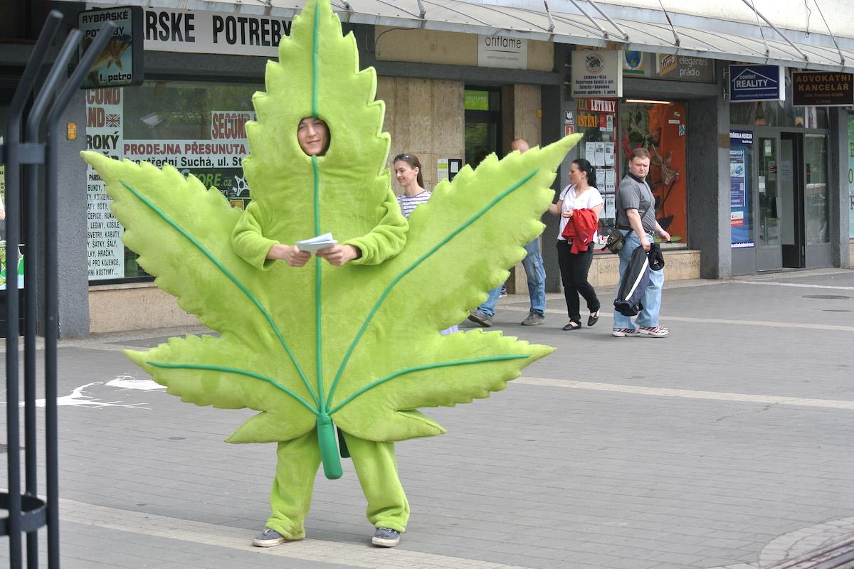 Na novou Konopnou lékárnu upozorňoval v ulicích zelený list