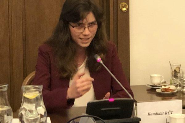 Hilšer a Smoljak způsobili rozruch při slyšení adeptů do Rady ČT