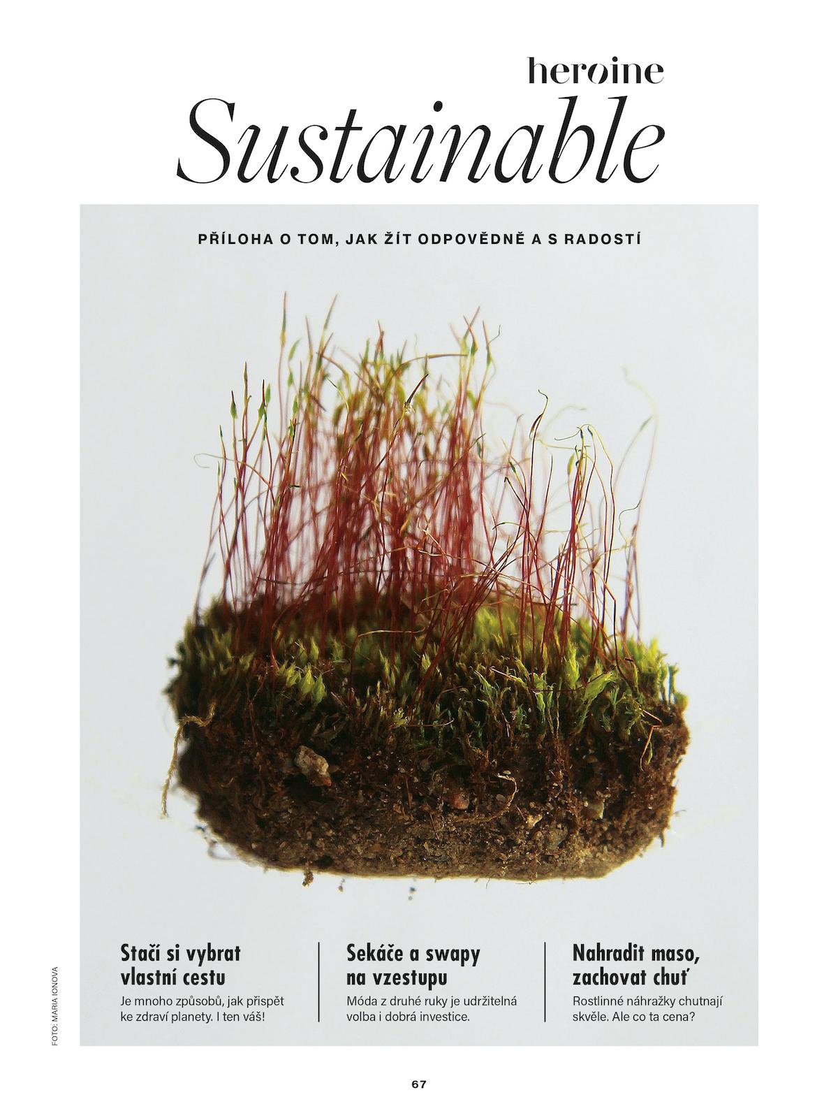 Úvodní stránka vložené přílohy Sustainable