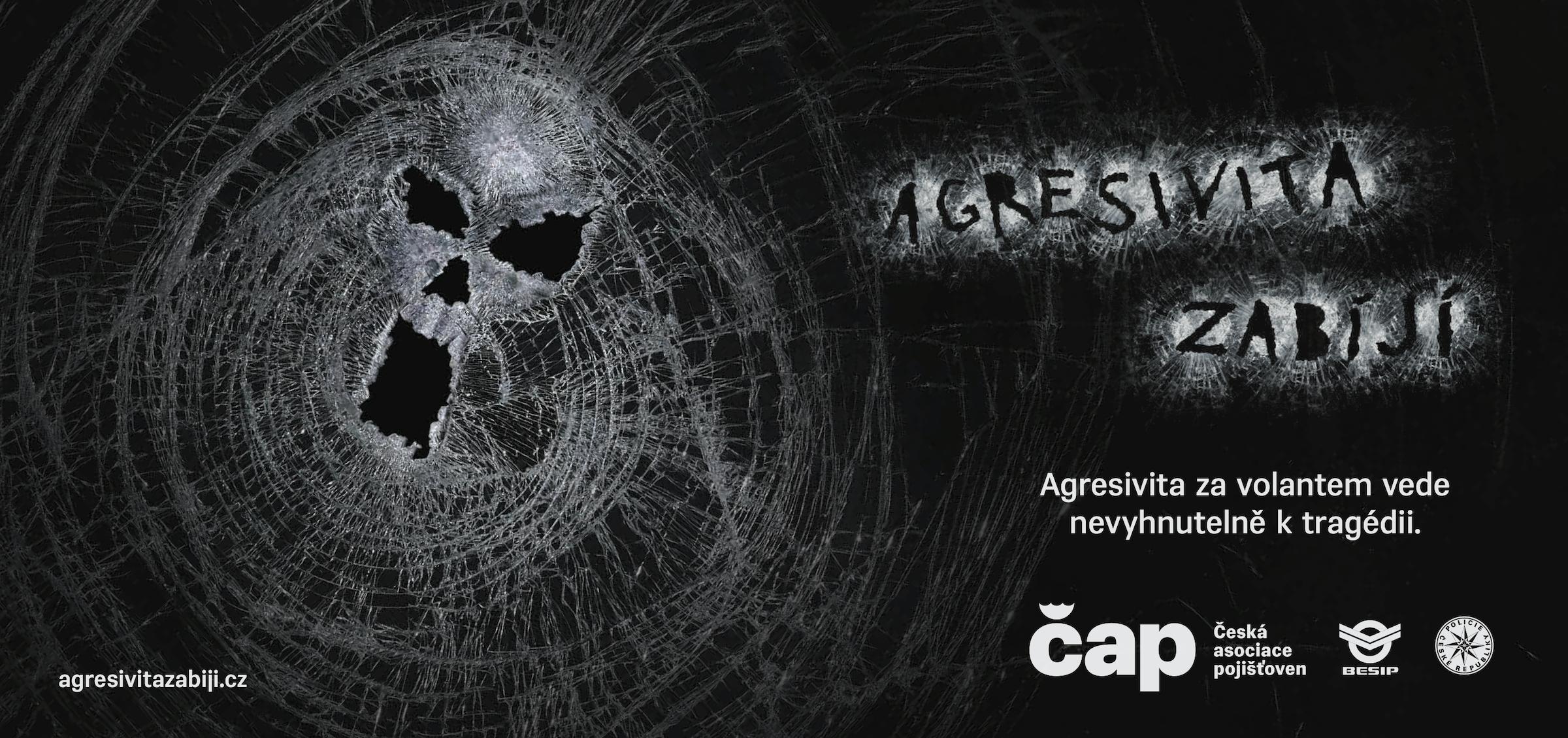 Česká asociace pojišťoven: Agresivita zabíjí