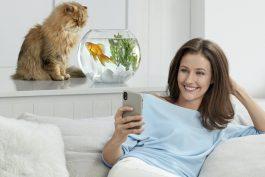 K nerudnému kocourovi z Monety přibyla panička a její zlatá rybka