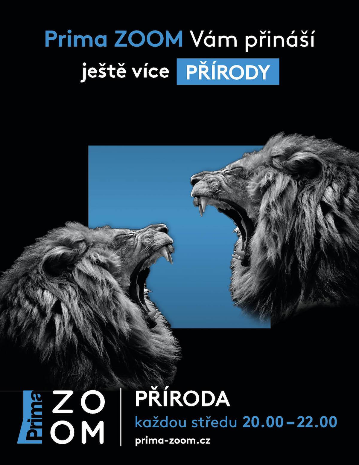 Kampaň na novinky na Prima Zoom