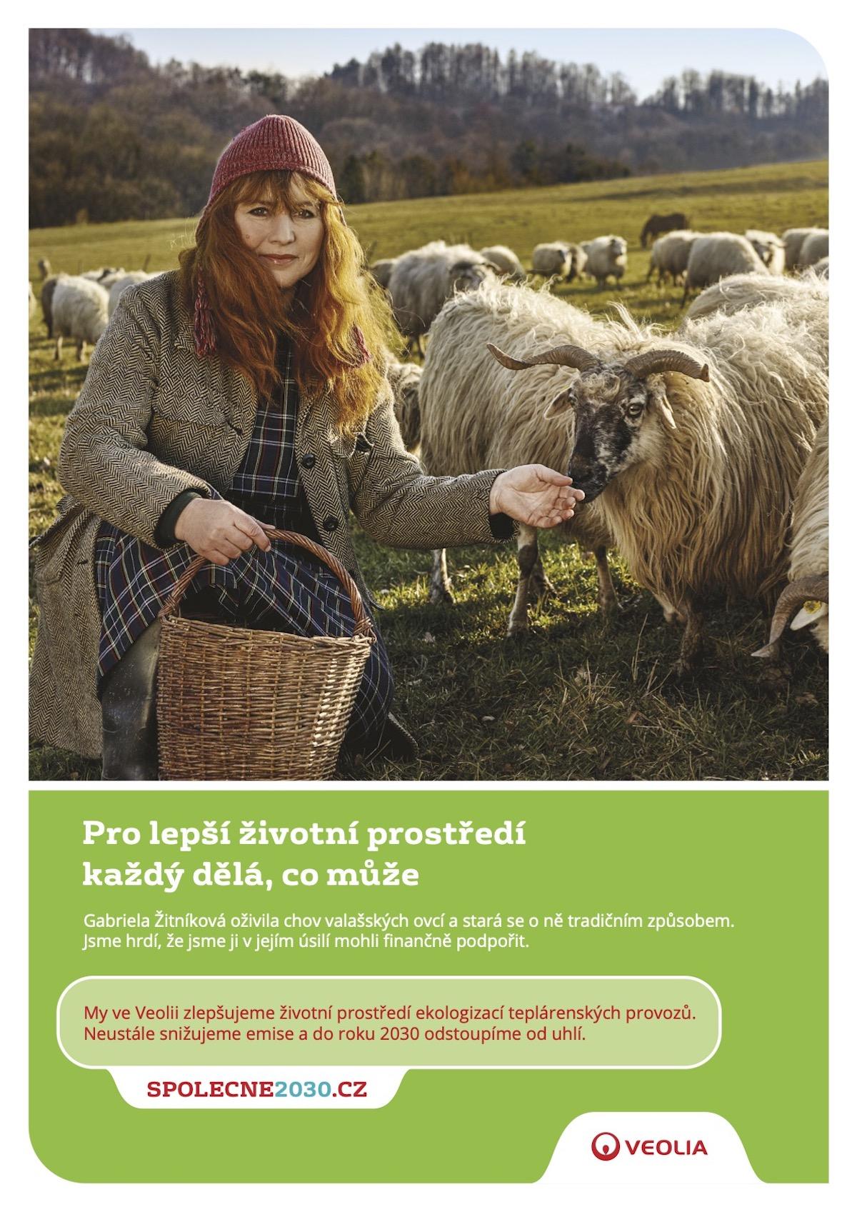 Veolia: Ovce (Lucky U)