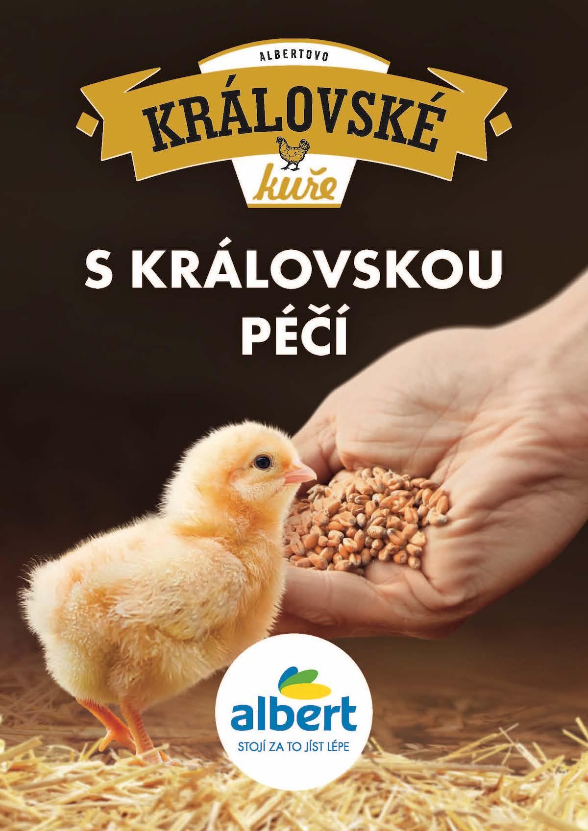 Albert: Královské kuře (VCCP)